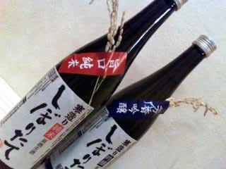 Nipponsyu20091209192023_2